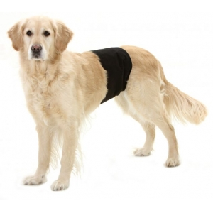 Kalhotky proti značkování psů