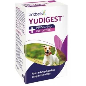 Lintbells YuDigestPlus