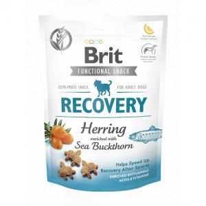 Brit Functional - Recorvery