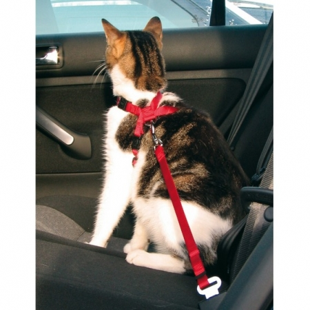Bezpečnostní postroj do auta pro kočku Trixie