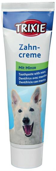 Zubní pasta s mátovou příchutí
