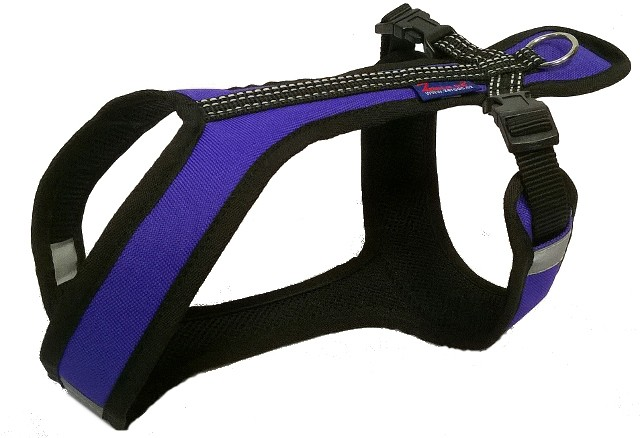 Postroj Zero Short - fialovo/černý