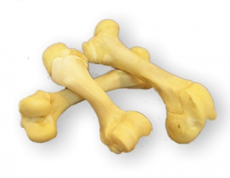 Kost vepřová - bílá