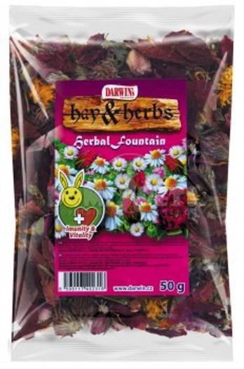 Darwins Hay & Herbs - imunity & vitality