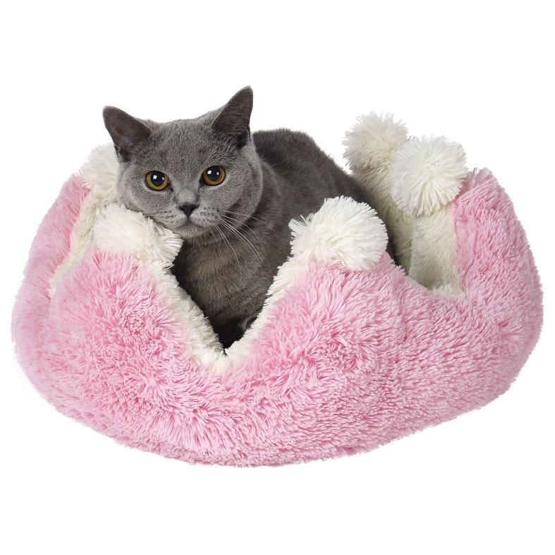 Pohodlí kočky