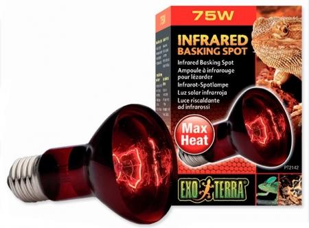 Žárovka Exo Terra Infrared Basking Spot